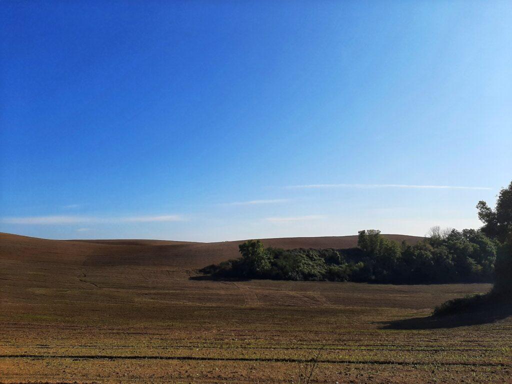 La campagna di Calcata